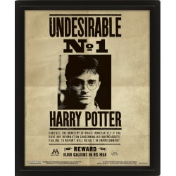 HARRY POTTER - POSTER 3D LENTICULAR